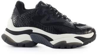 Ash Addict Cocco Print Black Sneaker