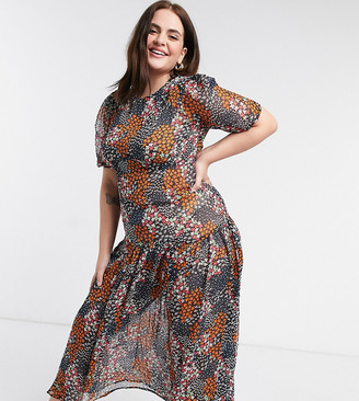 Never Fully Dressed Plus cap sleeve drop hem midaxi dress in dark floral print