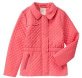 Gymboree Quilted Anorak