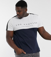 New Look PLUS city colour block t-shirt in Navy