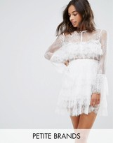 True Decadence Petite Premium Lace Ruffle Mini Dress With Sheer Sleeve Detail