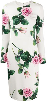 Dolce & Gabbana Cady tropical rose print dress
