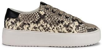 GREATS Waverly Sneaker