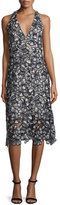 Alice + Olivia Noreen Floral Lace Midi Dress, Black/Gray