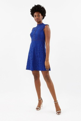 Coast A-Line Lace Trim Sleeve Short Dress