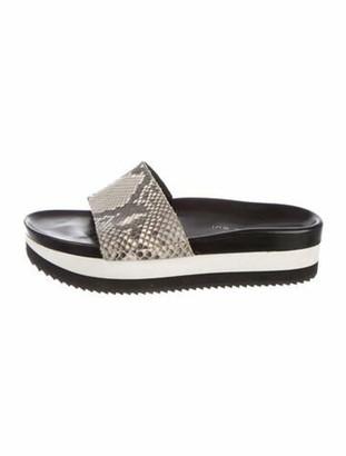 Barbara Bui Snakeskin Slides Grey