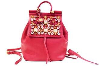 Dolce & Gabbana Pink Leather Backpacks
