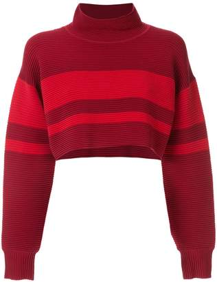 Nagnata retro cropped turtleneck jumper