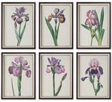 Uttermost 6-Pc. Iris Beauties Framed Wall Art