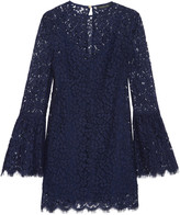 Rachel Zoe Carter corded lace mini dress