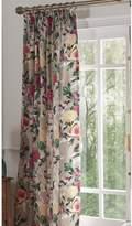 Dorma Henrietta Pencil Pleated Lined Curtains