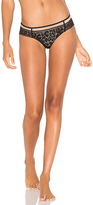 Calvin Klein Underwear Tease Bikini