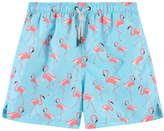 Kiwi Graphic swim shorts