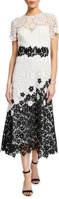 Theia Multicolor Tea-Length Floral Lace Dress
