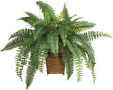 Asstd National Brand Nearly Natural Boston Fern Silk Plant with Wicker Basket