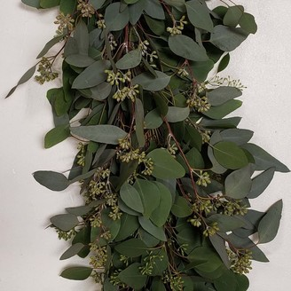 west elm Fresh Seeded Eucalyptus Garland