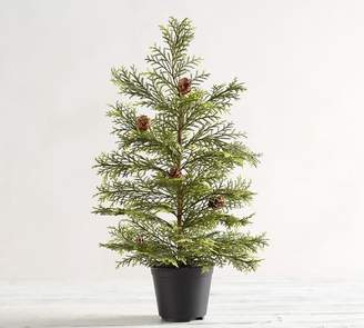 Pottery Barn Potted Faux Pine Topiary