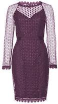 Alannah Hill NEW Women's - She's A Love Child Dress