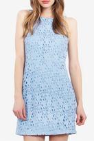 Gala Crochet Dress