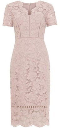 Phase Eight Trinity Corded Lace Dress