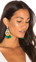 Elizabeth Cole Dandy Statement Earrings in Yellow.