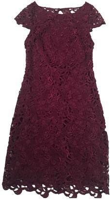 Alice + Olivia Alice & Olivia Purple Lace Dress for Women
