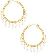 Dean Davidson Nomad 22K Yellow Goldplated & Rainbow Moonstone Beaded Hoop Earrings