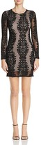 Olivaceous Sheer Lace Mini Dress