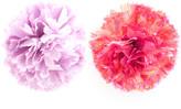 ban.do Mini Pom Pom Set Of 2 Pink