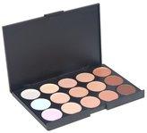 1 X World Pride 15 Color Professional Concealer Camouflage Makeup Palette
