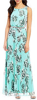 Jessica Howard Petite Floral-Print Pleated Maxi Dress