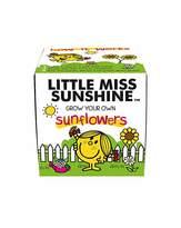 Mr Men Little Miss Sunshine Grow Kit