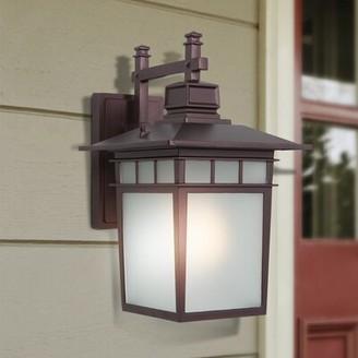 Alcott Hill Hannon Outdoor Wall Lantern