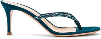 Gianvito Rossi Suede Thong Sandals in Persian | FWRD