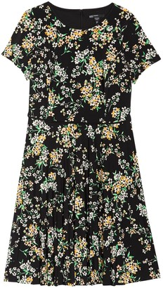 Maggy London Floral Short Sleeve Pleated Dress