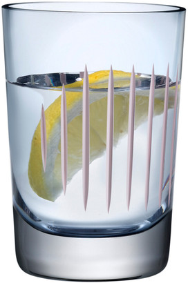 Nude Glass Parrot Tumbler Set Of 2 Glasses