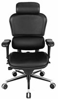 Eurotech Ergohuman Le9erg, Ergonomic Executive Leather Chair, Black