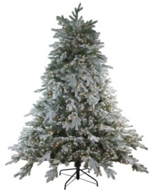 Northlight 6.5' Pre-Lit Frosted Butte Fir Artificial Christmas Tree - Clear Lights