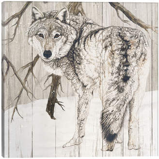 iCanvas icanvasart Wolf In Woods Canvas Art Print