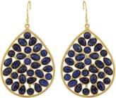 Lapis Carousel Jewels Gold & Sliced Drop Earrings
