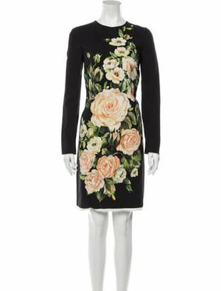 Dolce & Gabbana Rose Knee-Length Dress Rose