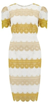 Dorothy Perkins Womens Little Mistress Yellow Tiered Lace Bodycon Dress, Yellow
