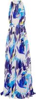 Matthew Williamson Pleated printed silk-chiffon gown