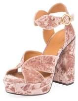 Chloé Graphic Leaves Velvet Sandal, Tan Rose