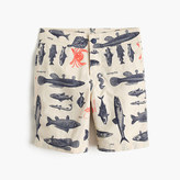 J.Crew Boys' board short in saltwater fish