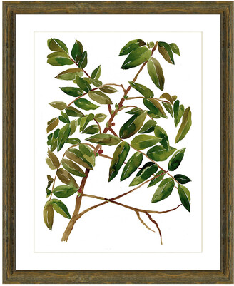 Vintage Print Gallery Branches In The Wind Ii Framed Graphic Art