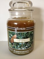 Yankee Candle 22 oz Jar Crisp Spruce Black Bands-VERY RARE!!