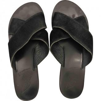 Ancient Greek Sandals Black Pony-style calfskin Sandals
