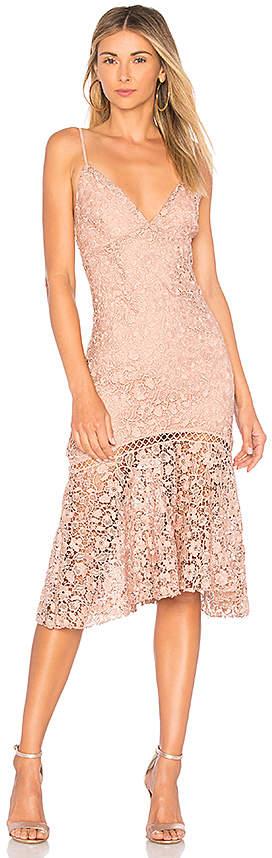 Karina Grimaldi Diana Lace Dress