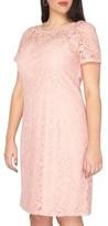Dorothy Perkins Plus Size Women's Lace Sheath Dress